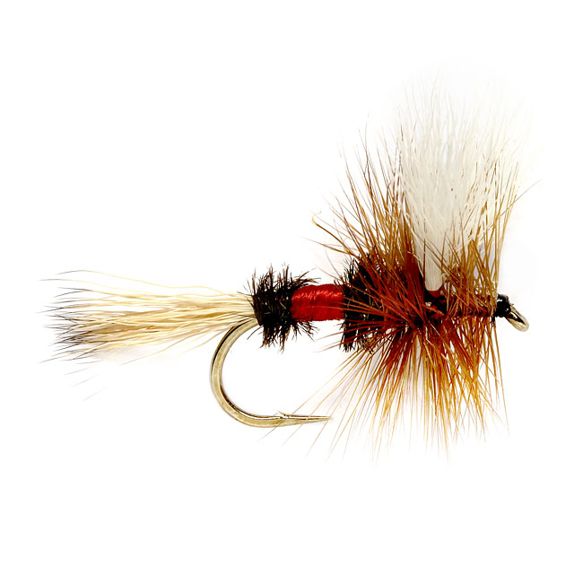 Royal Wulff Dry Fly #14